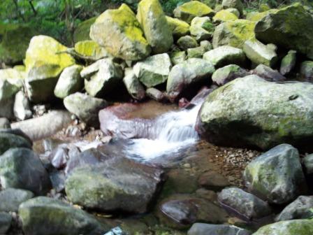 台北青山瀑布05.JPG