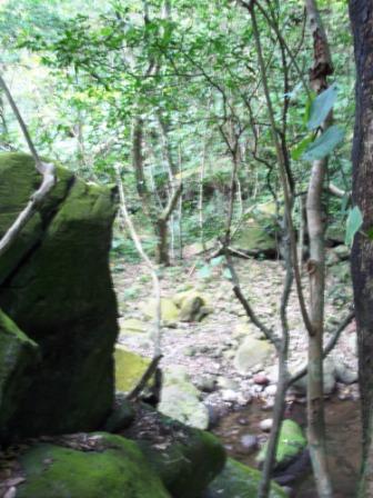 台北青山瀑布06.JPG