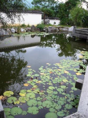 仁山植物園-東方庭園49.JPG