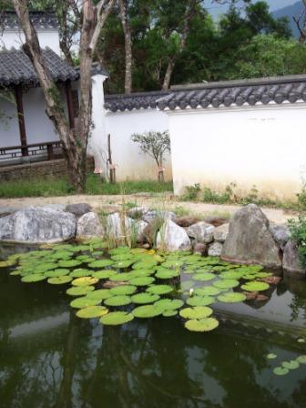 仁山植物園-東方庭園74.JPG