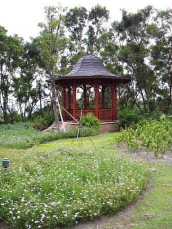 仁山植物園-歐式庭園54.JPG