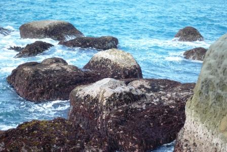基隆和平島15.JPG