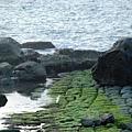 基隆和平島23.JPG