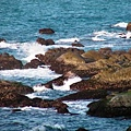 基隆和平島44.JPG