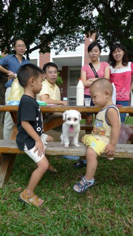 20090926 台南勝利早點全餐大挑戰 (44).JPG