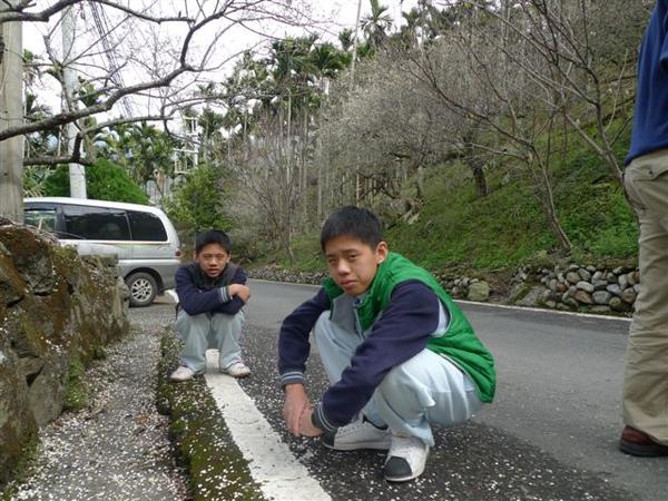 20100101 風櫃斗之人比花多 (2).JPG