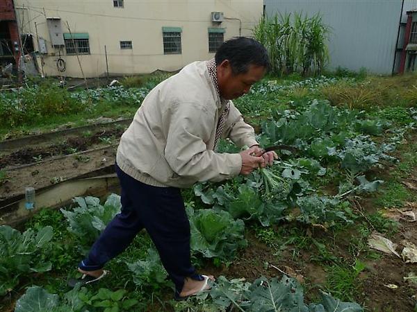 20100213 年夜飯大圍爐 (1).JPG