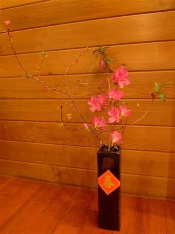 20100213 家的春裝扮by媽咪 (4).JPG