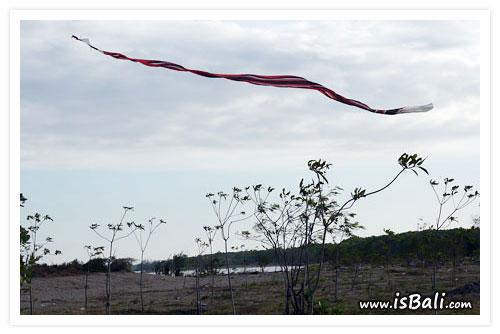 風箏節簡介06.jpg