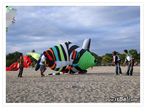 風箏節_國際_收02.jpg