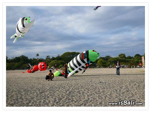 風箏節_國際_收01.jpg