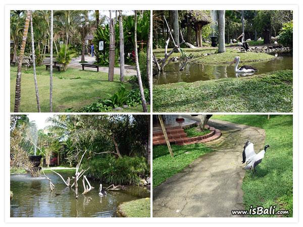 BaliBirdPark06.jpg