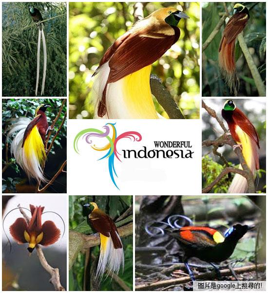 BaliBirdPark13a.jpg