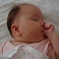 愛吃手 - 連睡著也愛吃