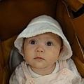 好奇寶寶 1