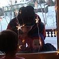 北極熊拔拔和Lars哥哥去挪威森林找聖誕樹
