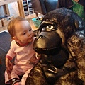 在挪威伯伯家發現的小動物 - 大猩猩