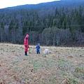 後頭就是一片挪威森林