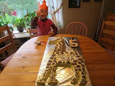 我五歲了,今年的生日蛋糕是長頸鹿