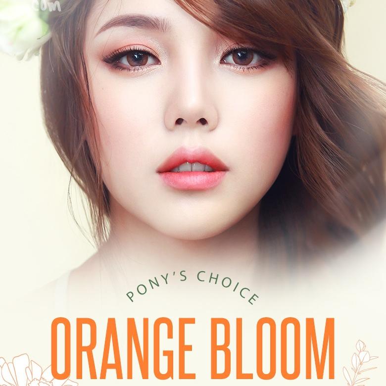 pony3-orange-bloom-box-thumb-edit