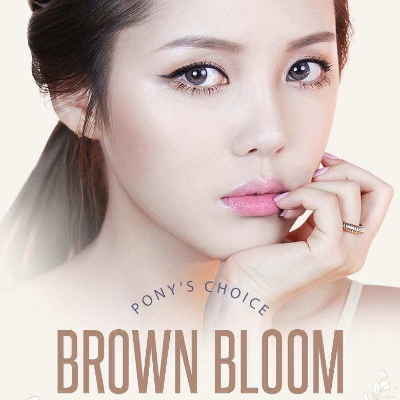 pony3-brown-bloom-box-thumb-edit