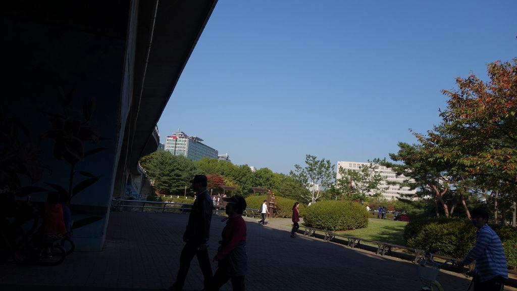 DSC03404