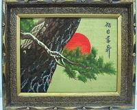 071 萬年松 ( 金 ).JPG