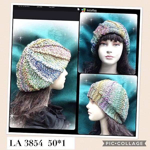 芙緹造型帽 (2).JPG