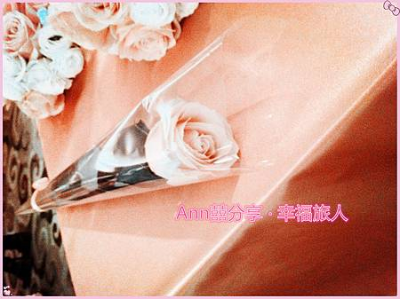 IMG_3549_副本