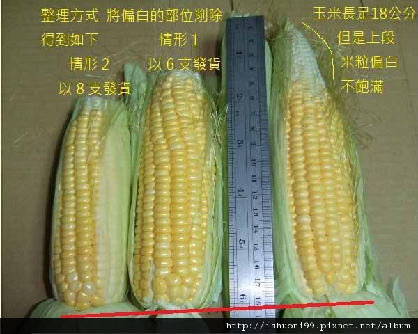 水果玉米規格.jpg