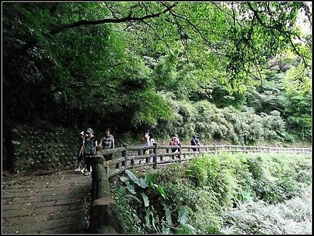 青山瀑布荖梅公園 (20).jpg