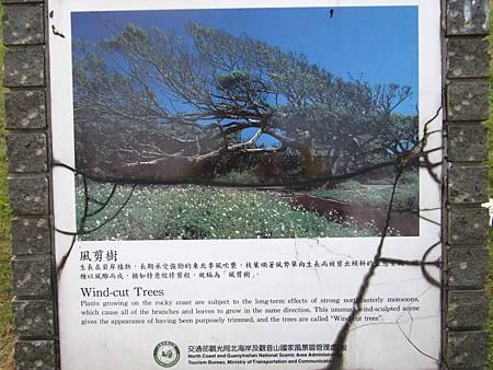 青山瀑布荖梅公園 (55).JPG