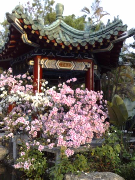 20090314378.jpg