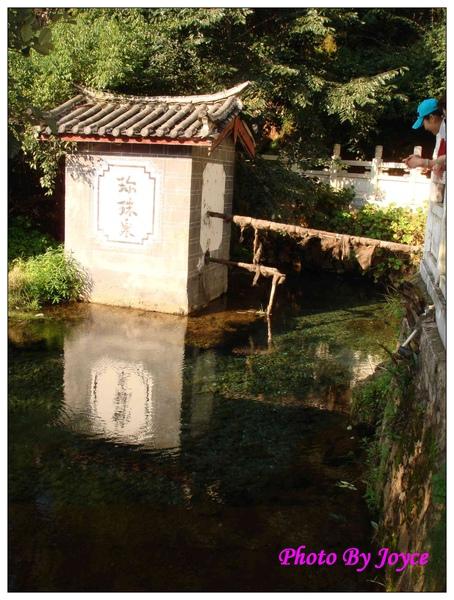 090831昆大麗D2麗江黑龍潭 (185).JPG