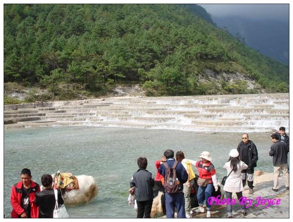 090831昆大麗D3玉龍雪山-白水河 (81).JPG