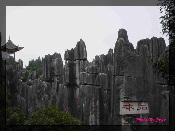 090831昆大麗D7石林風景區 (9).JPG