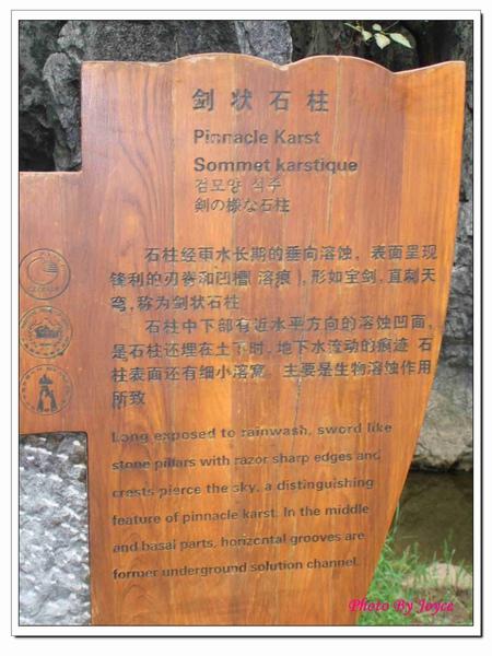 090831昆大麗D7石林風景區 (25).JPG