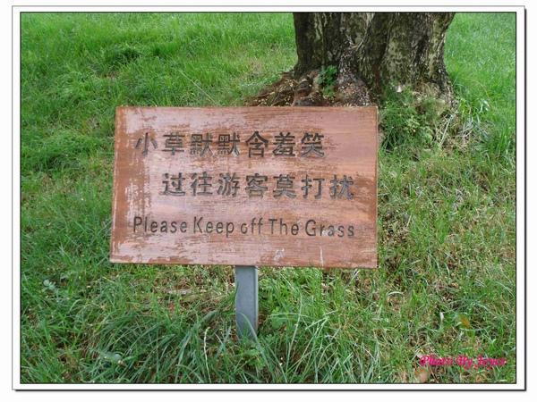 090831昆大麗D7石林風景區 (59).JPG