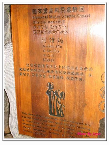 090831昆大麗D7石林風景區 (80).JPG