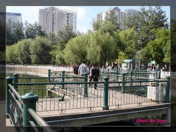 090831昆大麗D8昆明-翠湖公園 (27).JPG