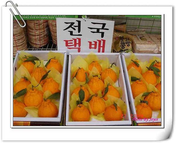 橘子_nEO_IMG.jpg