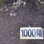 龜山島 (139).jpg
