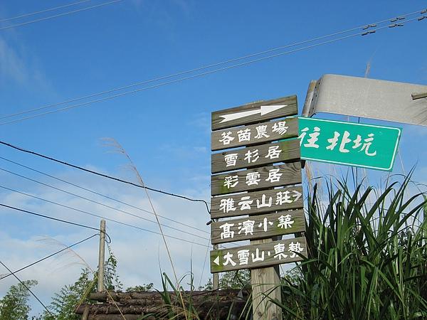 東勢大雪山 (216).jpg