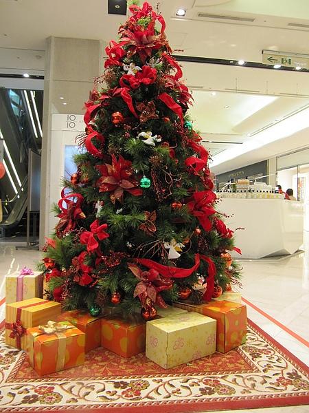 2010年聖誕集錦 (2).jpg