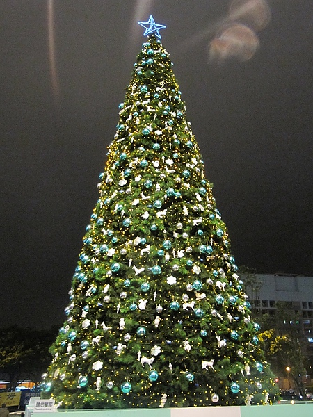2010年聖誕集錦 (11).jpg