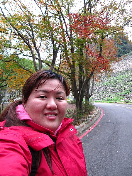 2010石門賞楓 (58).jpg