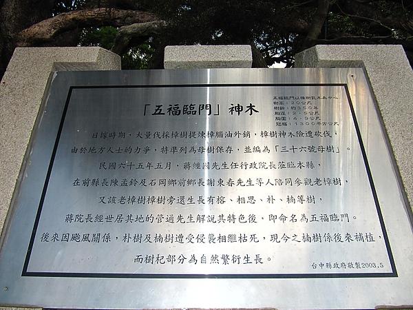 東勢大雪山 (49).jpg
