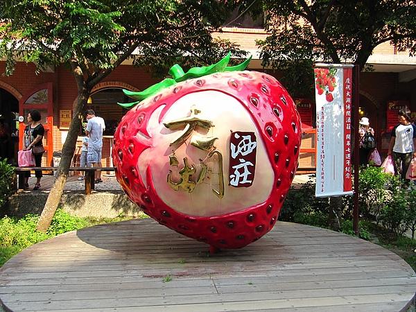 東勢大雪山 (375).jpg