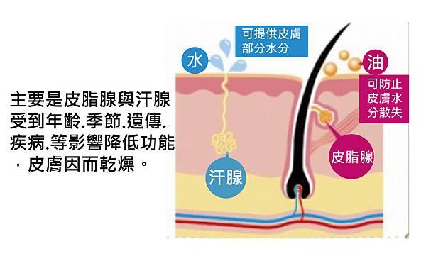 Physicians Box-Skin moisturizer-3