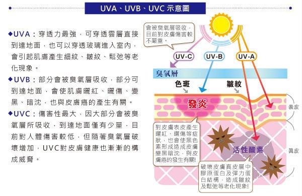 c-Sunscreen-3